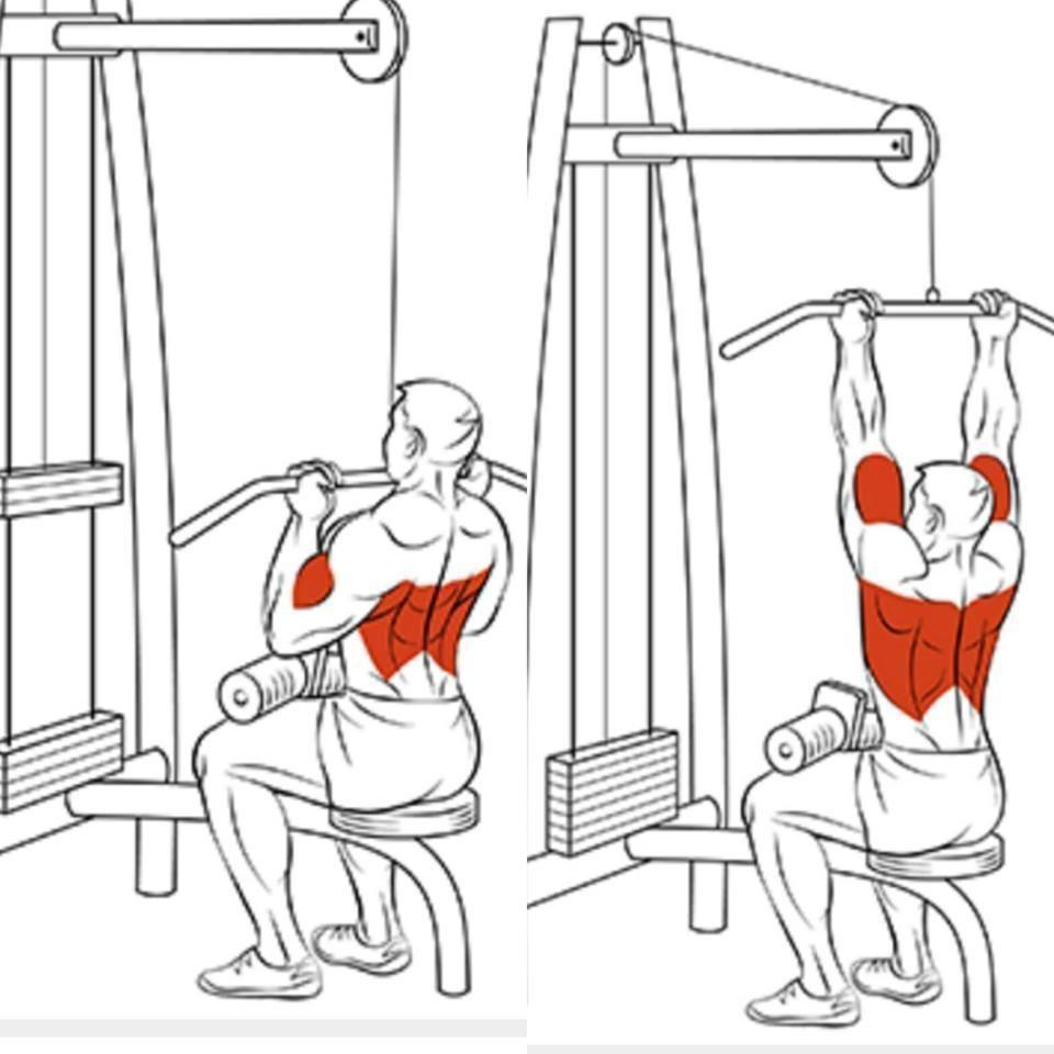Упражнения в картинках для низа спины