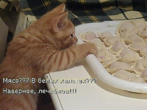 https://content-29.foto.my.mail.ru/mail/nataliya.turkina.74/_deti/i-640.jpg